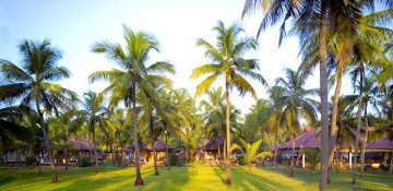 Bild zu Nattika Beach Resort | Indien