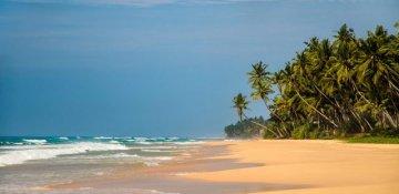 Bild zu ANANDA | Sri Lanka
